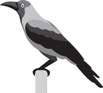 Crow Bird Cliparts Free Download Clip Art.