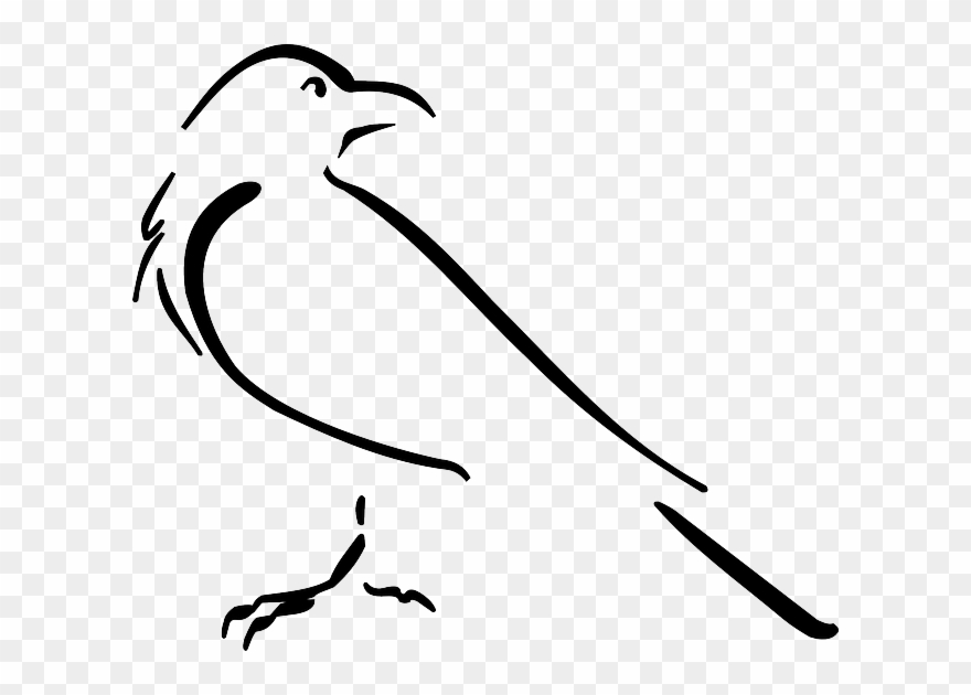 Crow Outline Clipart (#1492271).