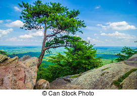 Stock Images of beautiful aerial landscape views from crowders.