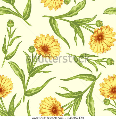 Marigold Marigold Flowers Stock Images, Royalty.