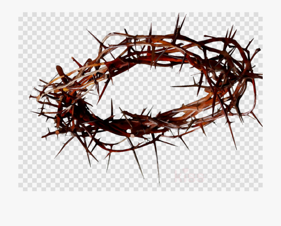 Crown Of Thorns Transparent Background.