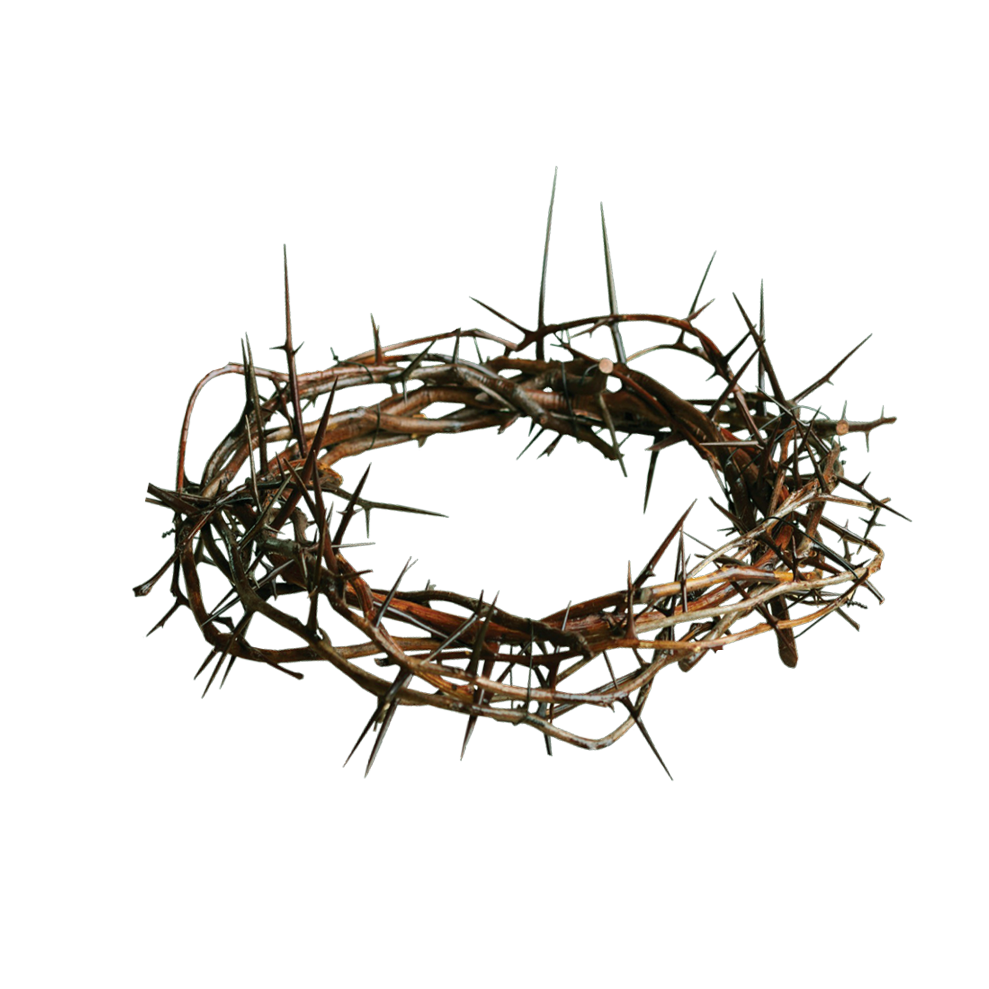 Crown Of Thorns PNG HD Transparent Crown Of Thorns HD.PNG Images.