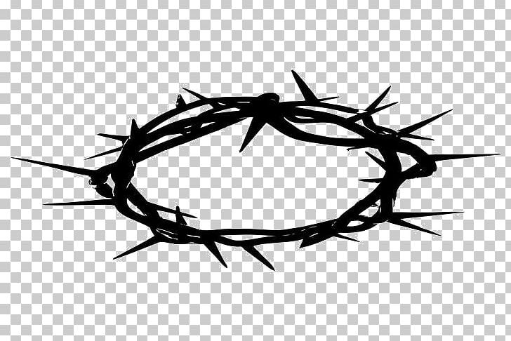 Crown Of Thorns Christianity Thorns PNG, Clipart, And Prickles.