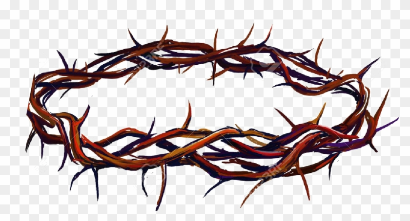 Crown Of Thorns Png Photo.