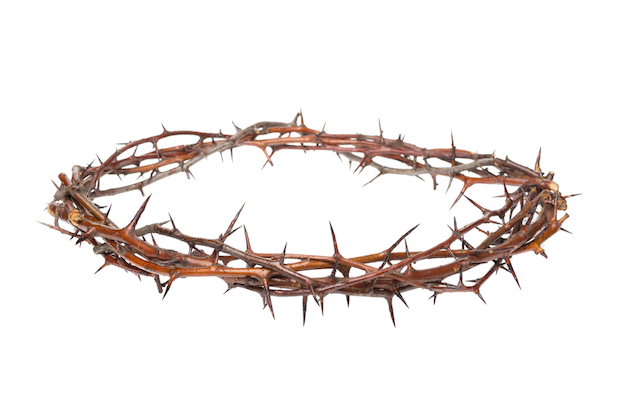 Crown Of Thorns Png (102+ images in Collection) Page 3.