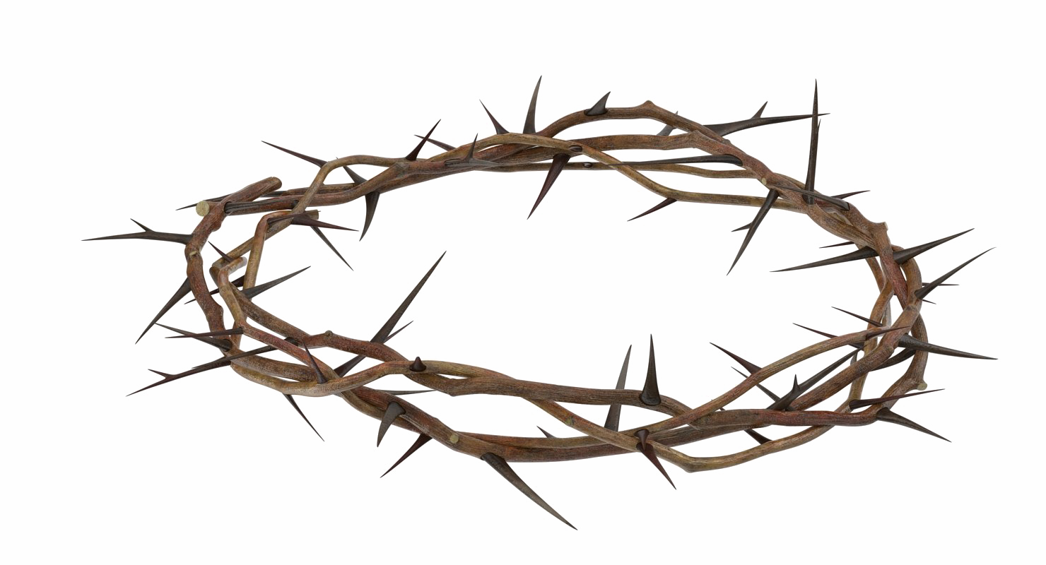 Crown of Thorns PNG Clipart.