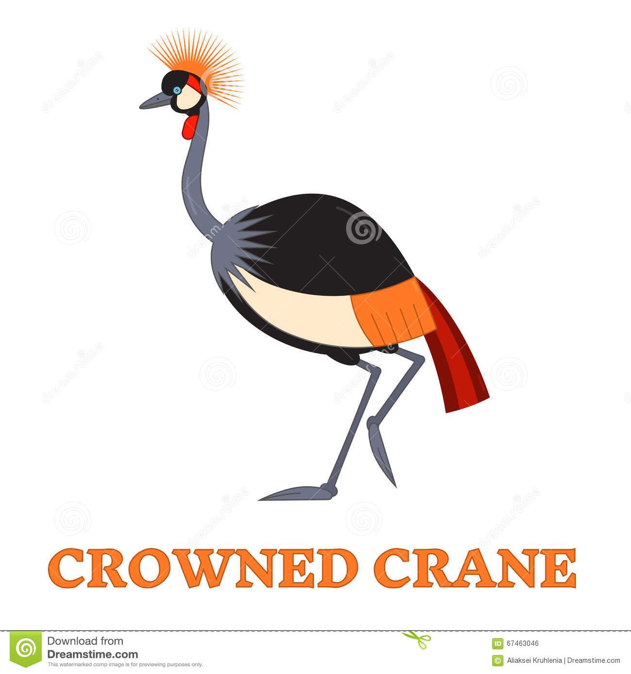 Cute Grey Crowned Crane Vector Stock Vector.