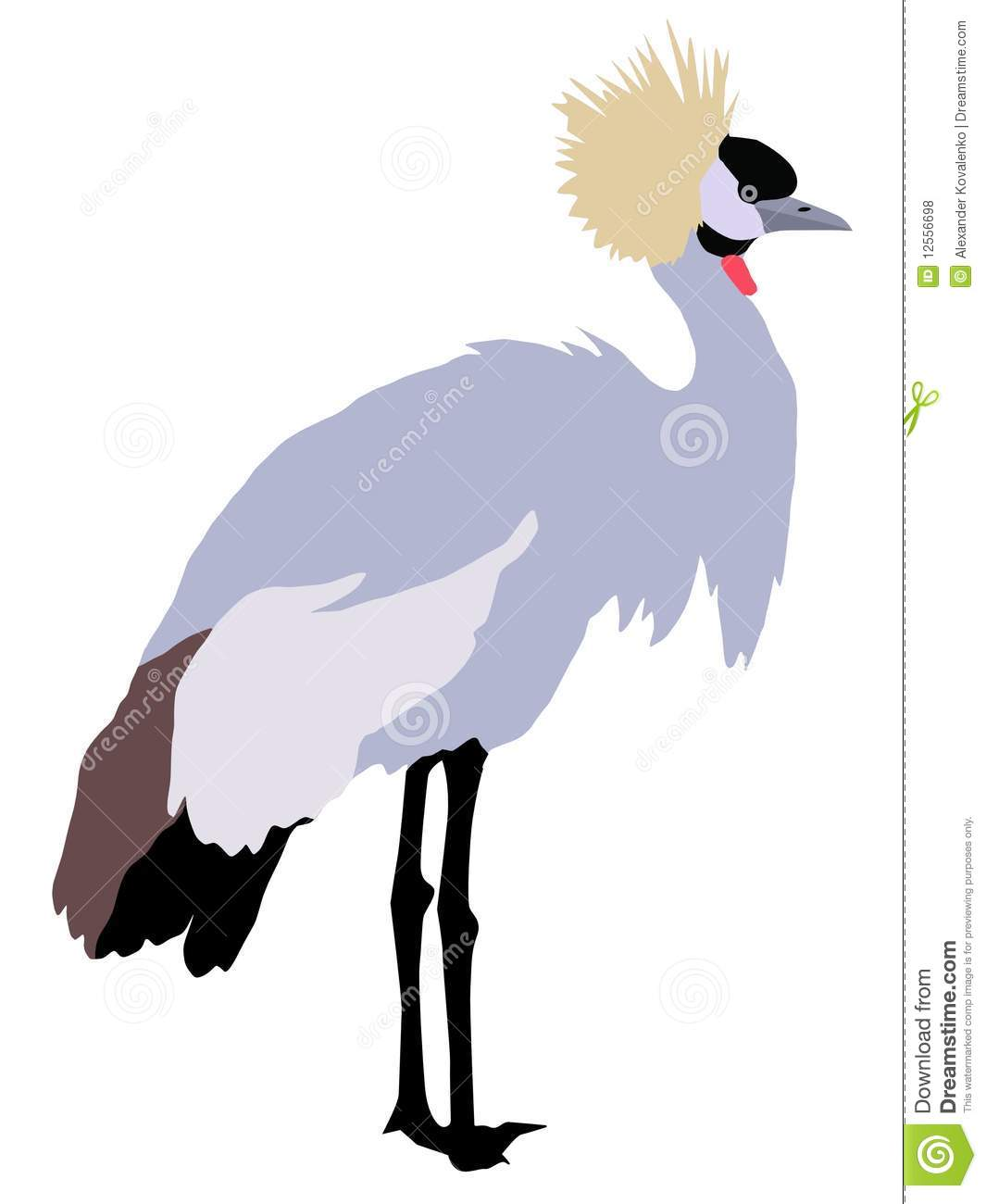 African Crowned Crane Royalty Free Stock Photos.