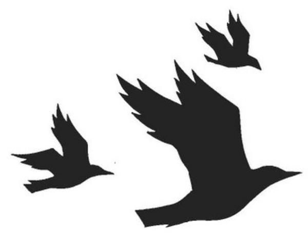 Cartoon Crows Clipart.