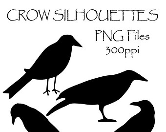 crows clipart.