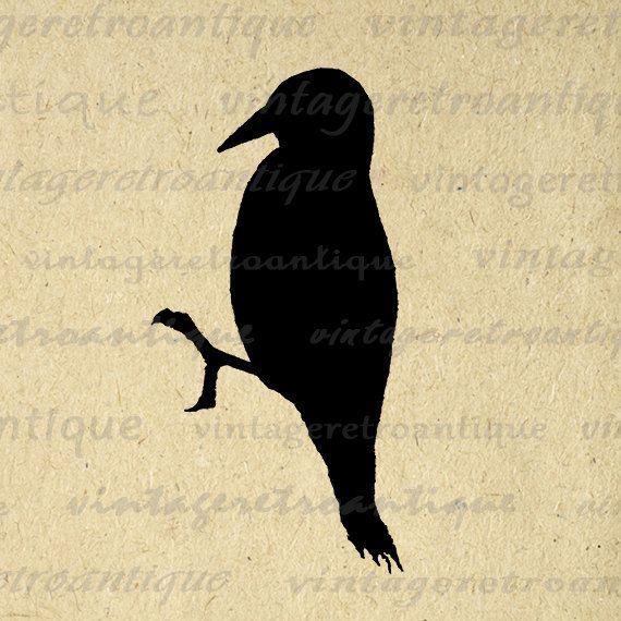 Silhouette d'oiseau, Clip art vintage and Élément vintage on Pinterest.