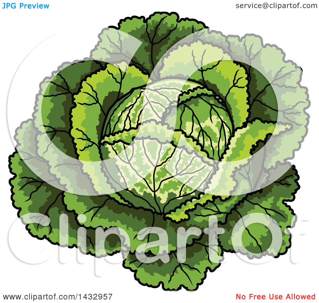 Clipart of a Cartoon Head of Cabbage.