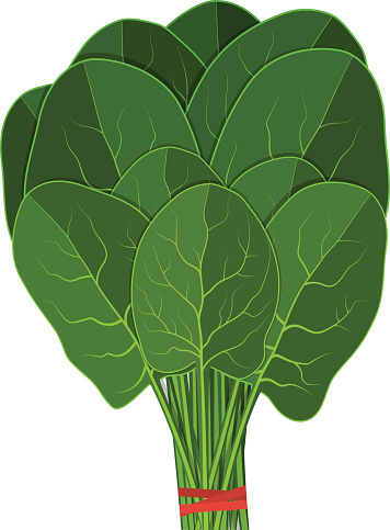 Silhouette Of Spinach Plant Clip Art, Vector Images.