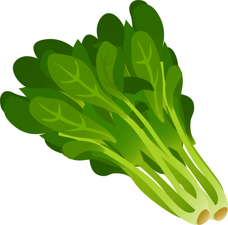 Spinach clip art.