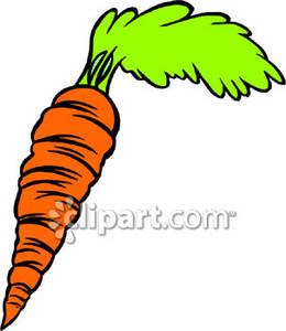Crunchy Carrot.