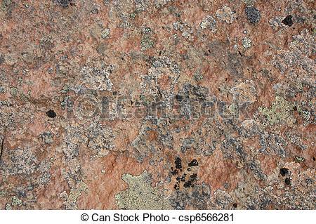 Stock Photo of Crustose Lichen on Arizona Rocks.