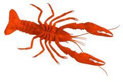 Render Crustacean Crayfish Stock Illustrations.