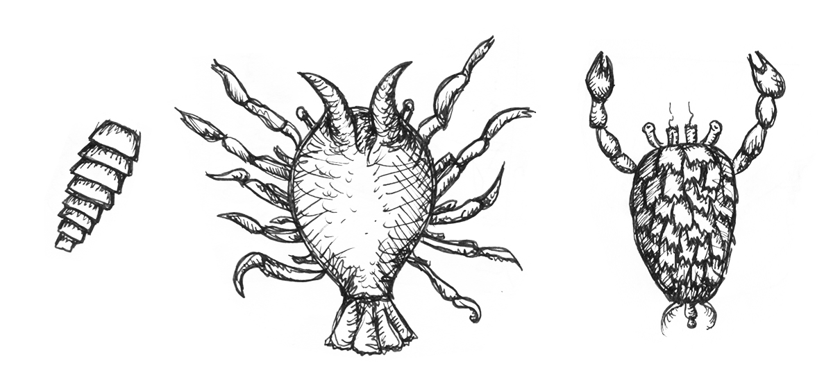 What Is Happening: Clip Art & Crustaceans Edition.