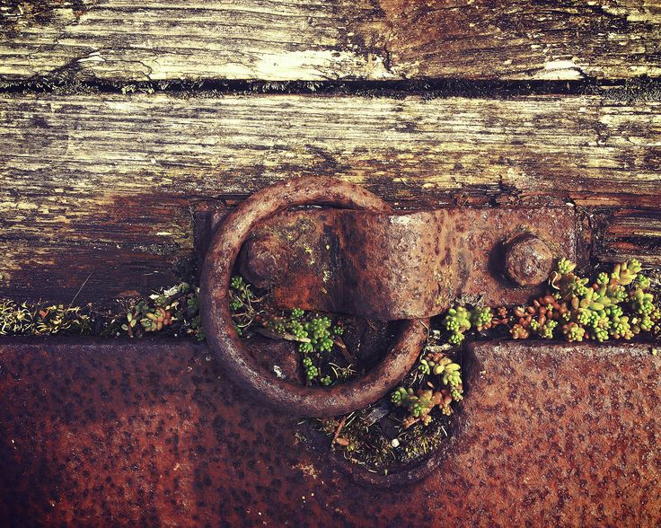 1000+ images about Rust Lust on Pinterest.