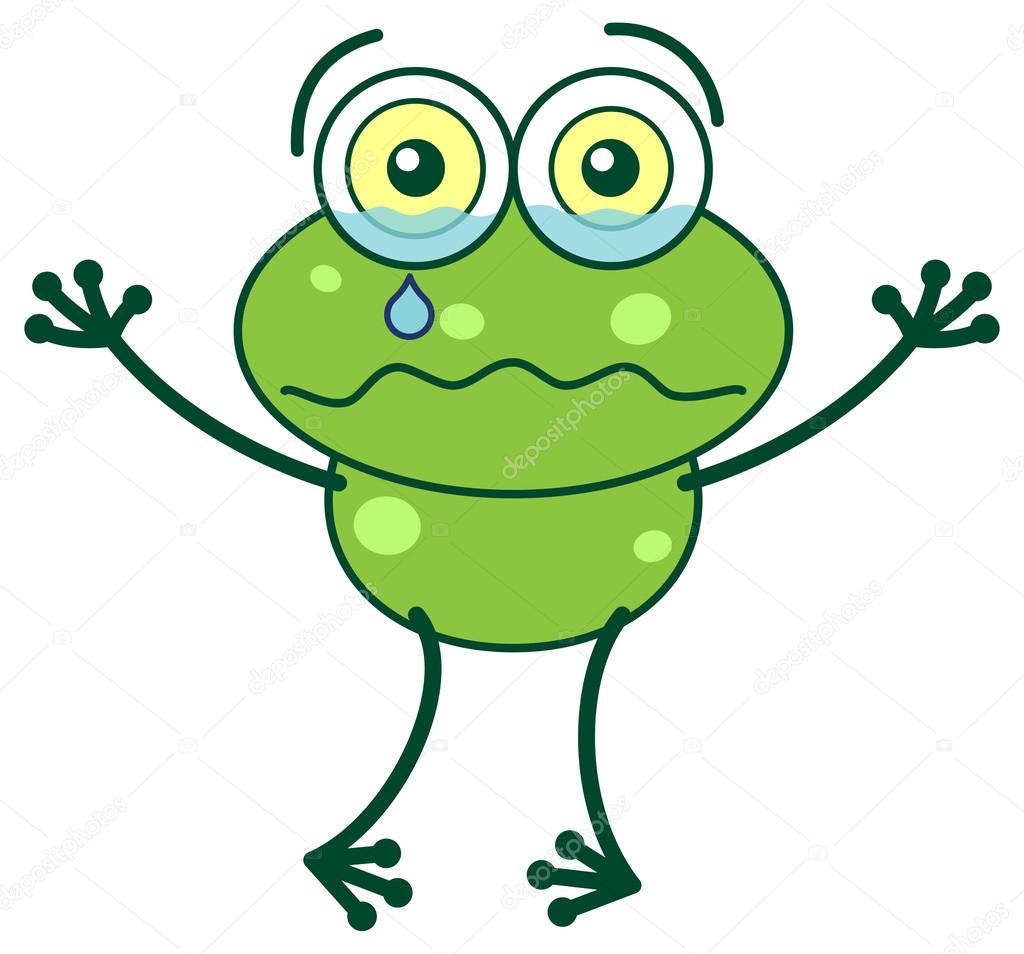 Green frog crying — Stock Vector © zoo.