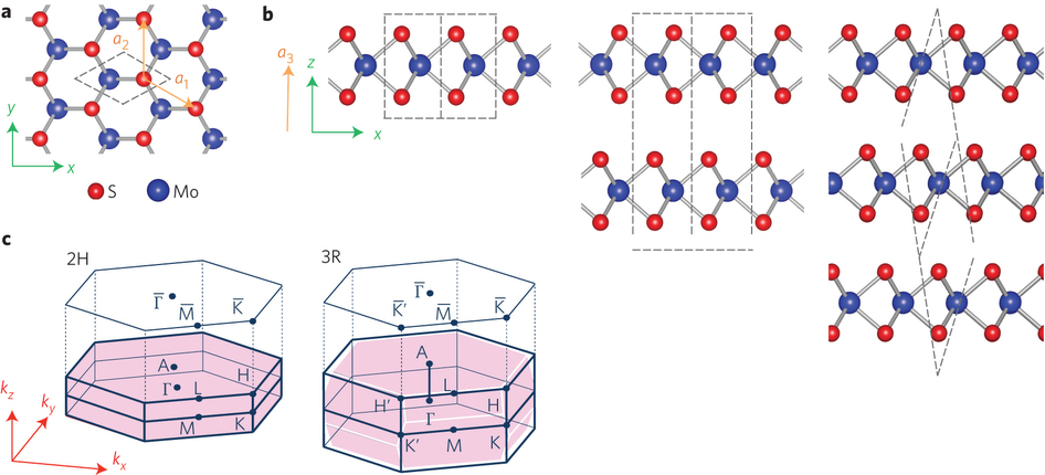 Crystal structure and Brillouin zones of monolayer, 2H and 3R.