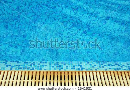 Chavdar's Portfolio on Shutterstock.