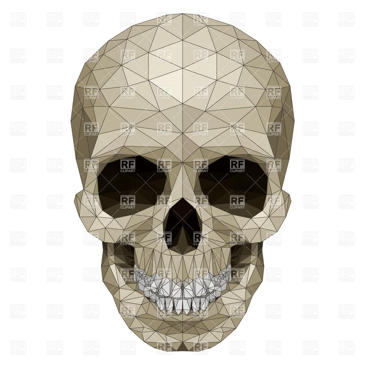 Crystal skull Vector Image #33397.