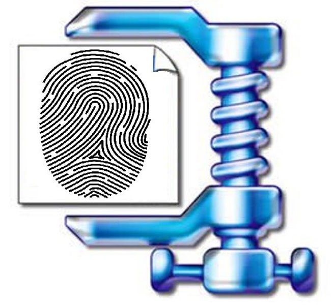Fingerprint Image Compression: Know Why It Matters.