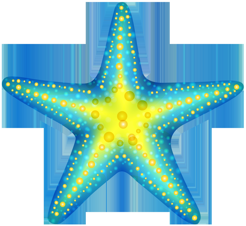Starfish Clip Art & Starfish Clip Art Clip Art Images.