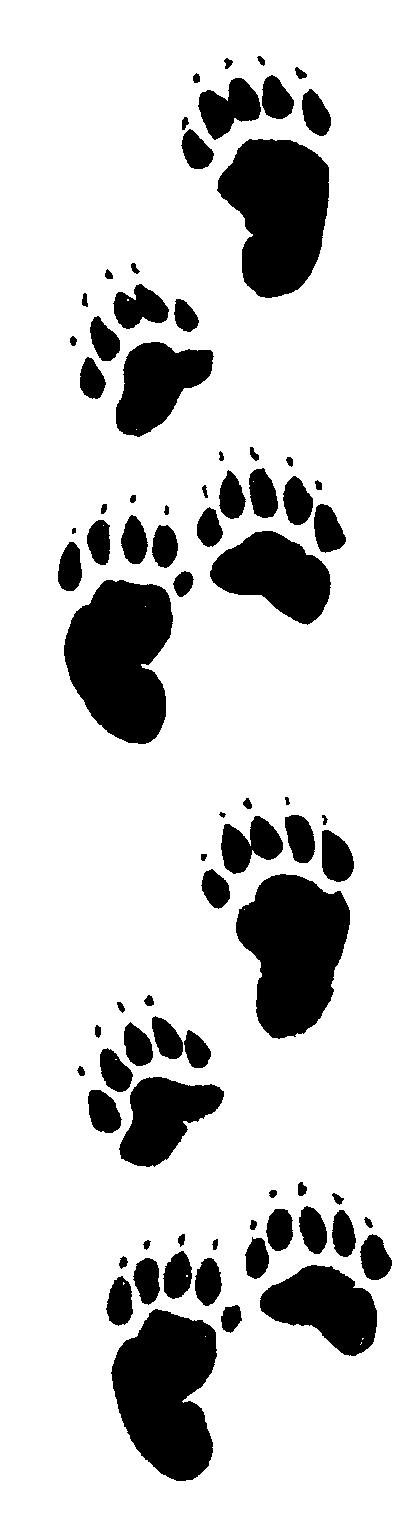 Bear Paw Clip Art.
