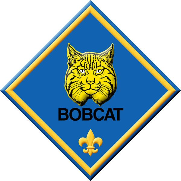 Pin on Tiger Scouts.