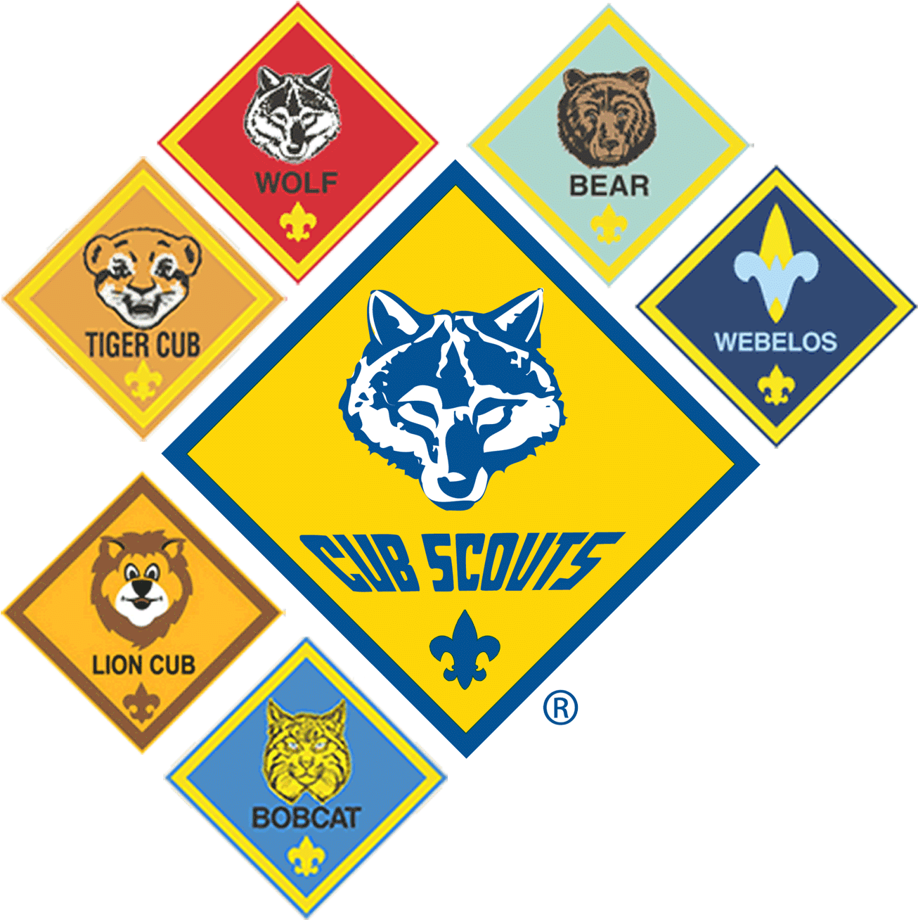 Interested In Cub Scouts.