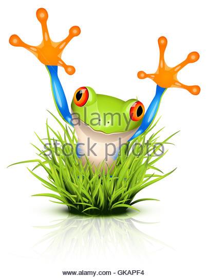 Tree Frog Alert Stock Photos & Tree Frog Alert Stock Images.