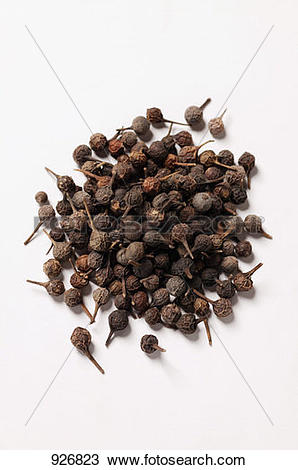 Stock Photo of Tailed pepper (Cubeb pepper) 926823.