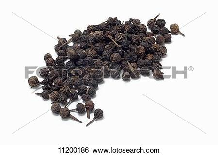 Stock Images of Cubeb (tailed pepper) 11200186.