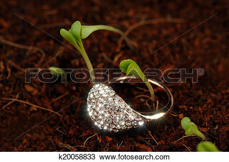 Stock Photo of Gold Ring with Cubic Zirconia (CZ) on the Ground.