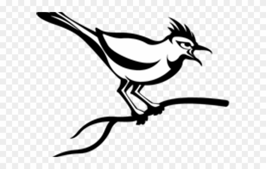 Cuckoo Clipart Indian Bird.