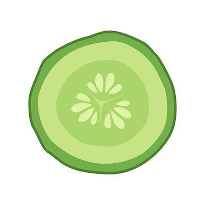 Cucumber Slice Cross Section With Seeds Stock Illustration.