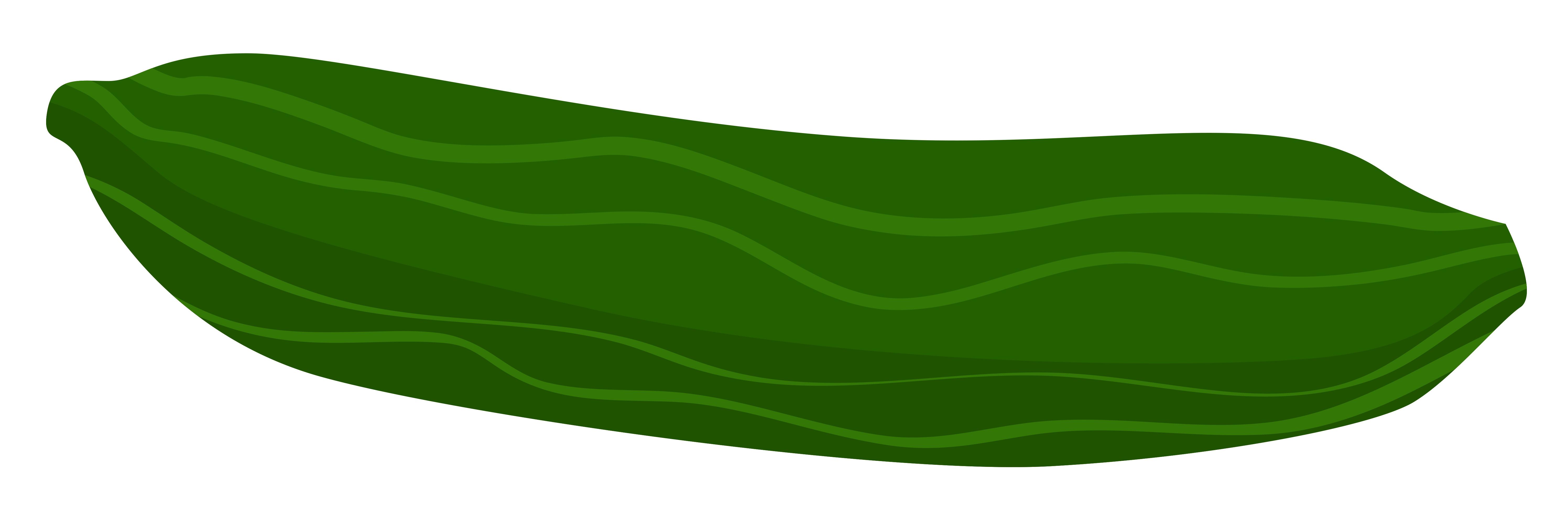 Cucumber Clipart.