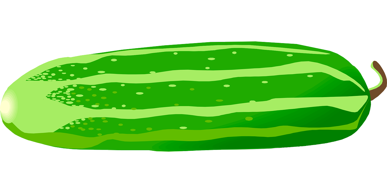 Free cucumber clipart.
