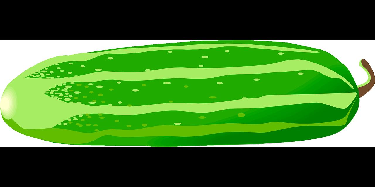 Free cucumber clipart.