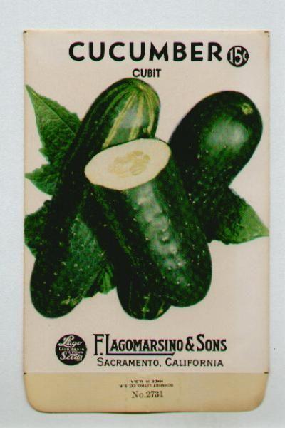 LAGOMARSINO, Cucumber, Cubit, Vintage Seed Packet.