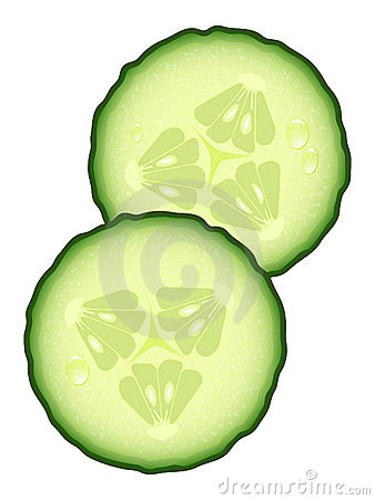 Cucumber Slices Stock Illustrations.
