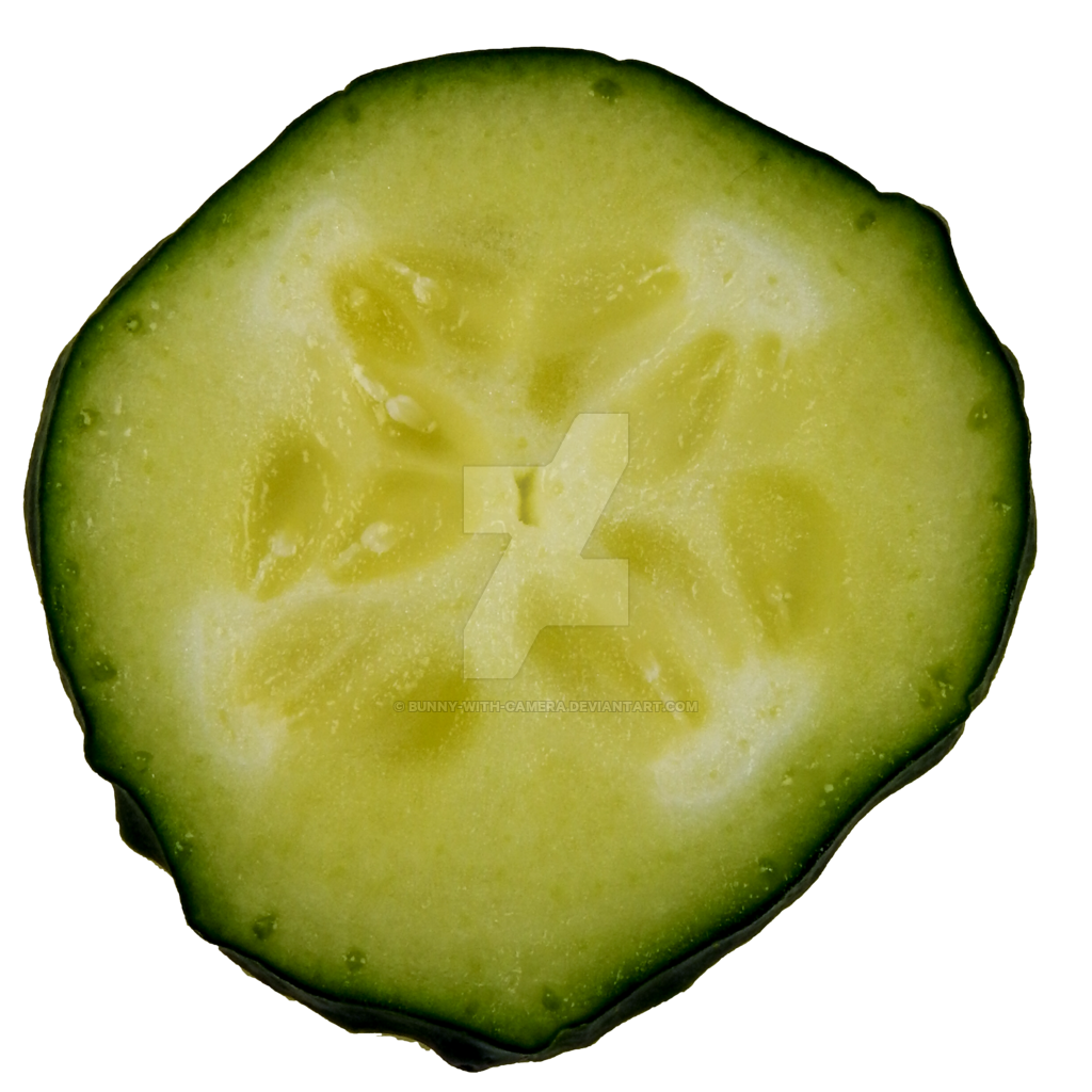 Cucumber Slice PNG by Bunny.
