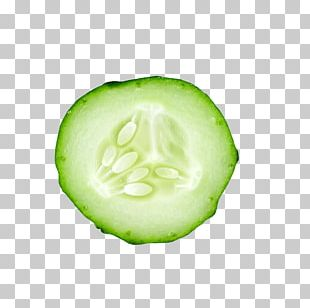 Cucumber Slice PNG Images, Cucumber Slice Clipart Free Download.