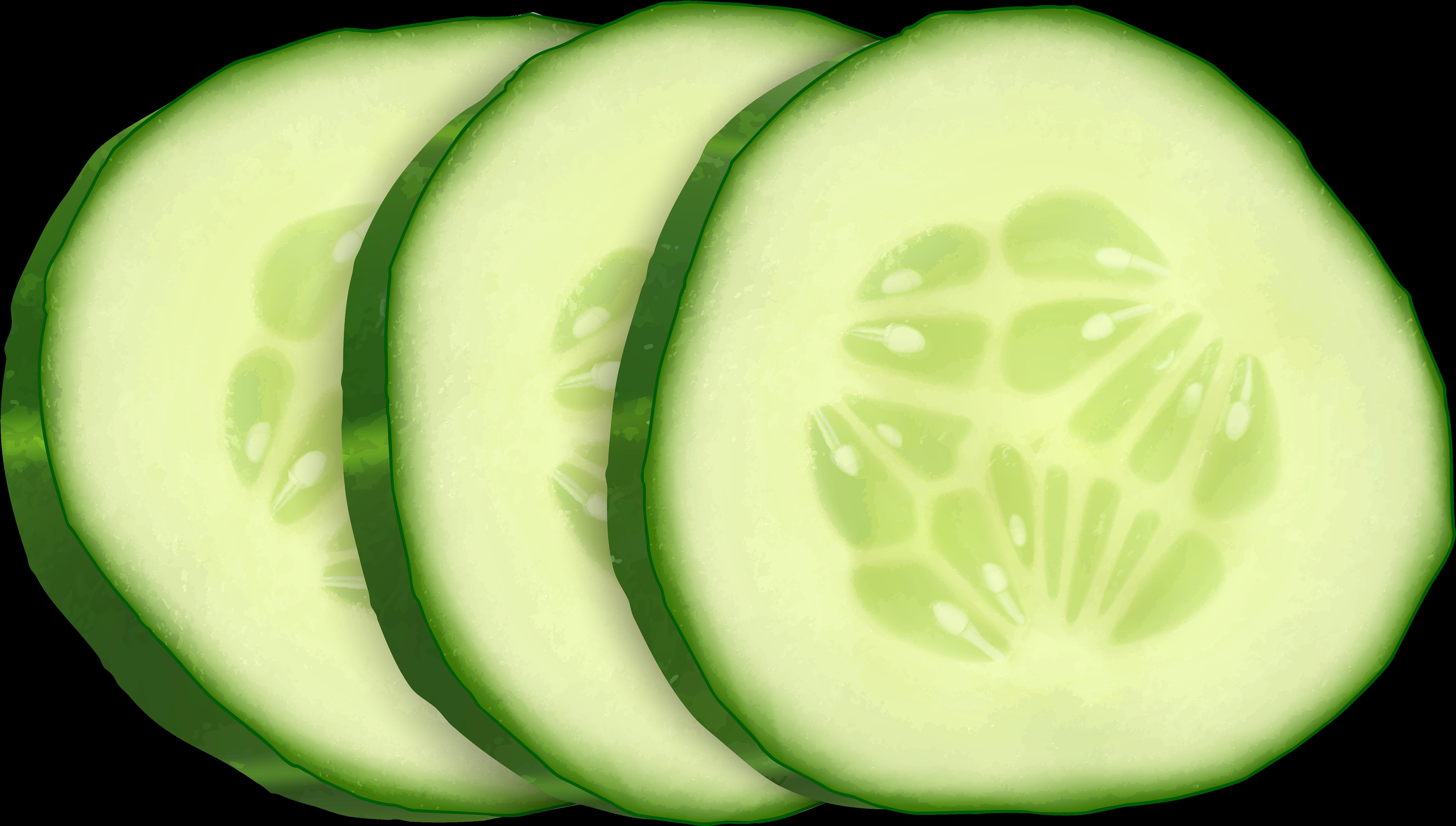 HD Cucumber Slice Clip Art.