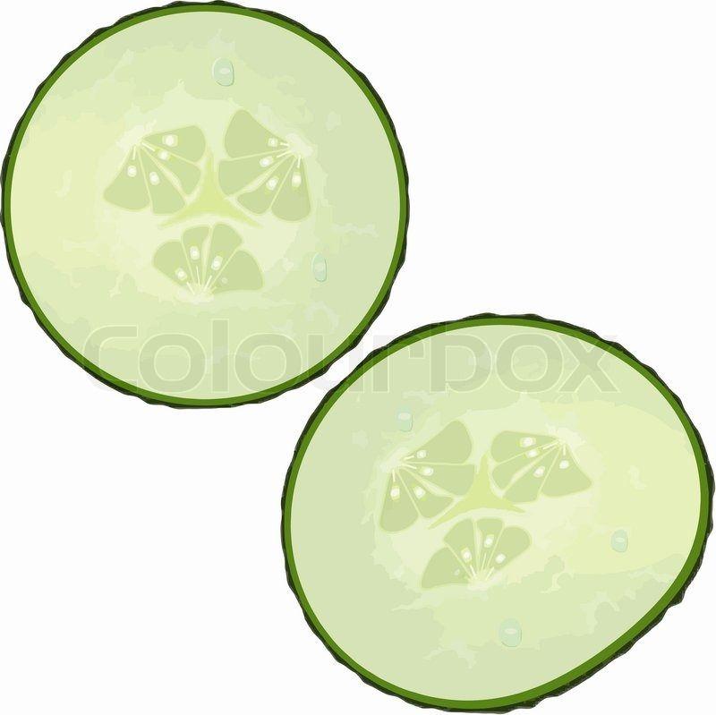 Showing post & media for Cartoon cucumber slices.