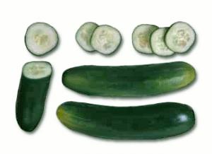 Cucumbers Clip Art Download.