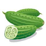 Cucumbers Stock Illustrations.