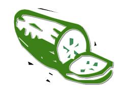 Cucumbers clipart #14